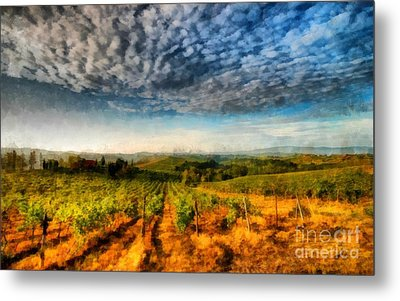 In The Vineyard Winery Landscape Metal Print by Edward Fielding