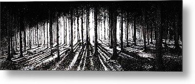 In The Woods 2 Metal Print