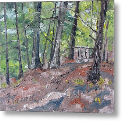 In The Woods No2 Metal Print by Francois Fournier
