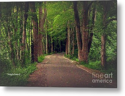 In To The   Deep Dark Woods  Metal Print