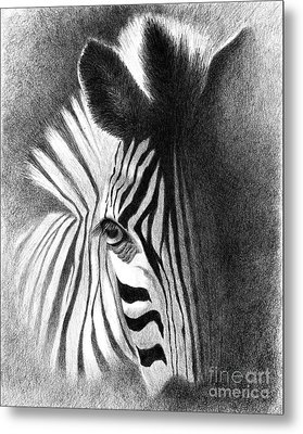 Incognito Metal Print by Phyllis Howard