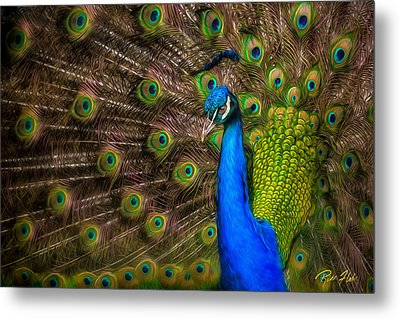 Metal Print featuring the photograph India Blue by Rikk Flohr
