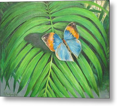 Indian Head Butterfly Metal Print