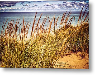 Indiana Dunes National Lakeshore Metal Print