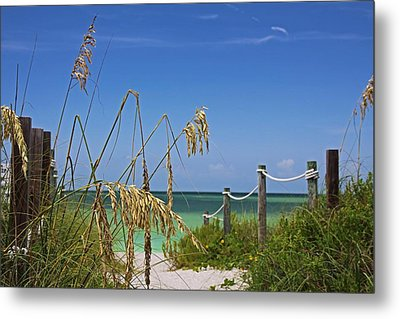 Metal Print featuring the photograph Indulging In Memories by Michiale Schneider