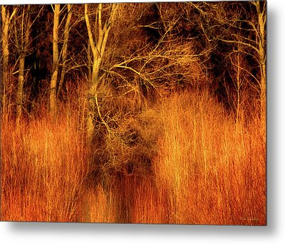 Inferno Metal Print by Wim Lanclus