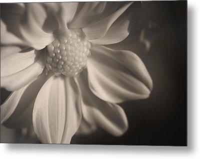 Infrared Mum Metal Print