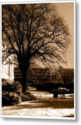 Metal Print featuring the photograph Inner Beauty  by Fine Art By Andrew David
