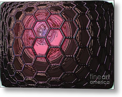 Insect Eye Metal Print by Patrick Guidato