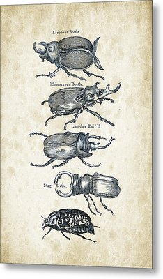 Insects - 1792 - 01 Metal Print