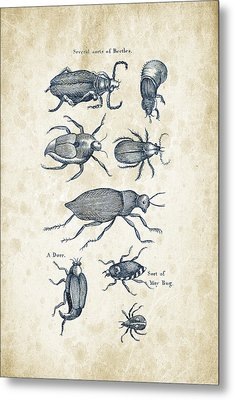 Insects - 1792 - 02 Metal Print by Aged Pixel