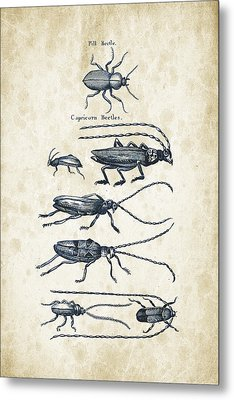Insects - 1792 - 03 Metal Print by Aged Pixel