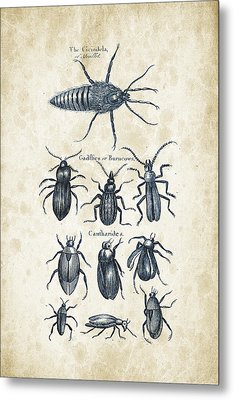 Insects - 1792 - 04 Metal Print by Aged Pixel