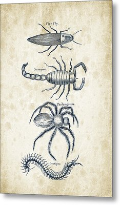 Insects - 1792 - 19 Metal Print by Aged Pixel