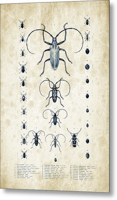 Insects - 1832 - 08 Metal Print by Aged Pixel