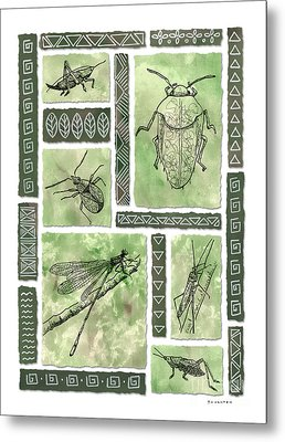 Insects Of Hawaii I Metal Print by Diane Thornton
