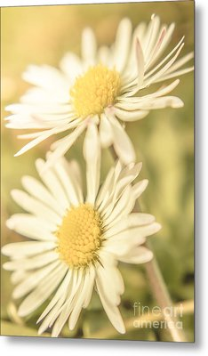 Inseparable  Metal Print by Jorgo Photography - Wall Art Gallery