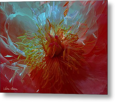 Inside The Heart Of A Peonie Metal Print by Sabine Stetson