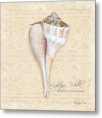 Inspired Coast 3 - Lightning Whelk Shell Busycon Contrarium Metal Print by Audrey Jeanne Roberts
