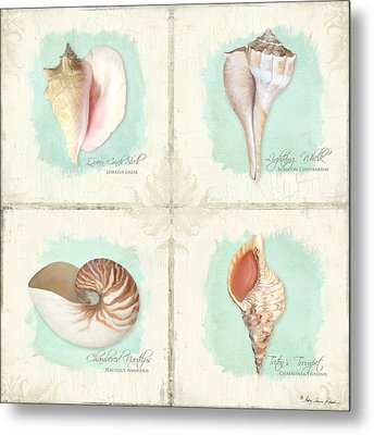 Inspired Coast Quartet - Seashells On Crackle Texture Board Metal Print by Audrey Jeanne Roberts