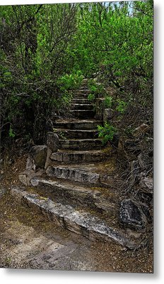 Metal Print featuring the photograph Instep With Nature V53 by Mark Myhaver