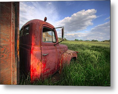 International In The Tall Grass Metal Print
