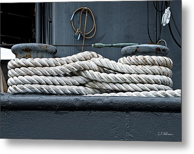 Intertwined Metal Print by Christopher Holmes