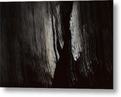 Into The Dark  Metal Print by Nadalyn Larsen