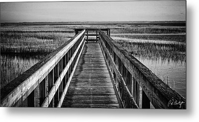 Into The Marsh  Metal Print by Phill Doherty