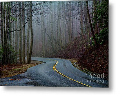 Metal Print featuring the photograph Into The Mist by Douglas Stucky