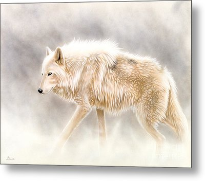 Into The Mist Metal Print by Sandi Baker
