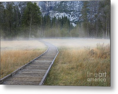 Metal Print featuring the photograph Into The Mist by Sandra Bronstein
