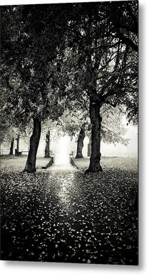 Into The Unknown Metal Print by Maggie Terlecki