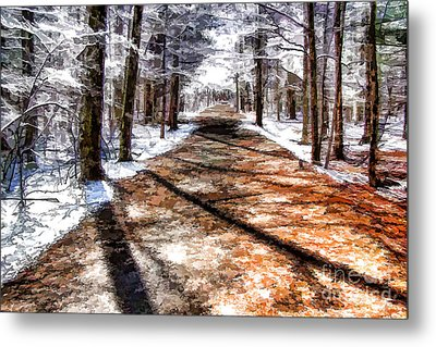 Into Winter Metal Print by Betsy Zimmerli