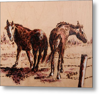Invisible Fence Metal Print