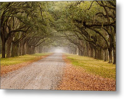 Inviting Metal Print by Eggers Photography