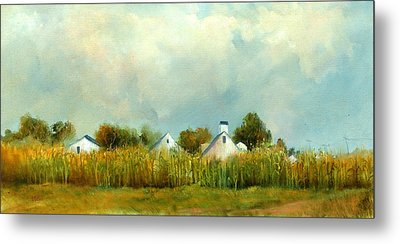 Iowa Cornfields Metal Print by Sally Seago