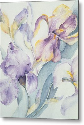 Iris Metal Print by Karen Armitage