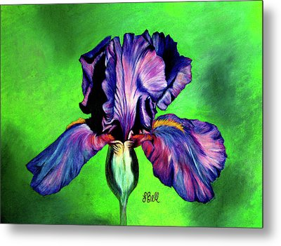 Metal Print featuring the painting Iris by Laura Bell