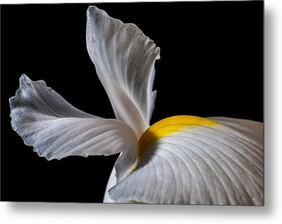 Iris Wings Metal Print by Art Barker