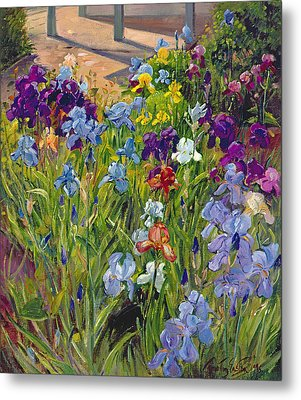 Irises And Summer House Shadows Metal Print