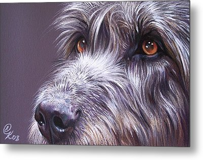 Irish Eyes Metal Print