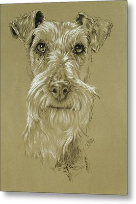 Irish Terrier Metal Print