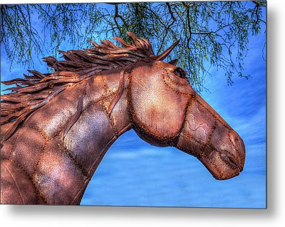Metal Print featuring the photograph Iron Horse by Paul Wear