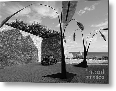 Iron Trees And Beetle Metal Print by Angelo DeVal