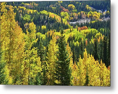 Metal Print featuring the photograph Ironton Fall Color by Ray Mathis