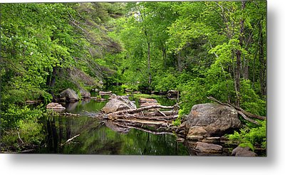 Isinglass River, Barrington, Nh Metal Print by Betty Denise