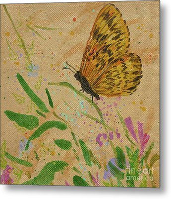 Island Butterfly Series 4 Of 6 Metal Print