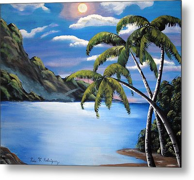 Island Night Glow Metal Print by Luis F Rodriguez