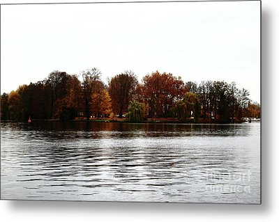 Island Of Trees Metal Print